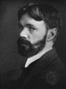 День рождения классика поэзии Дэвида Герберта Лоуренса