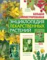 Ильина Т.А.. Большая иллюстрированная энциклопедия лекарственных растений
