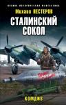 Нестеров М.. Сталинский сокол. Комдив
