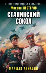 Нестеров М.. Сталинский сокол. Маршал авиации